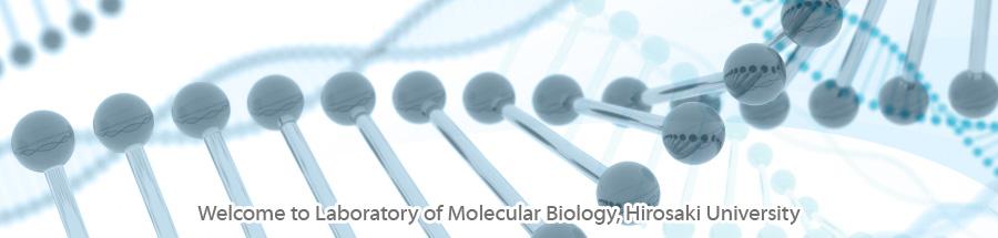 Welcome to Laboratory of Molecular Biology, Hirosaki University